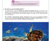 Le biotope marin